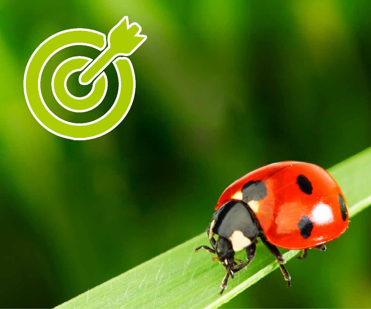 Obiettivi del progetto Itaca Viticoltura eroica sostenibile