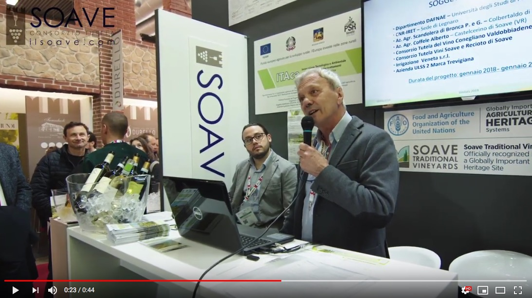 ITAca video a Vinitaly 2019